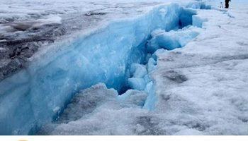 Прикол про белку из ледникового периода