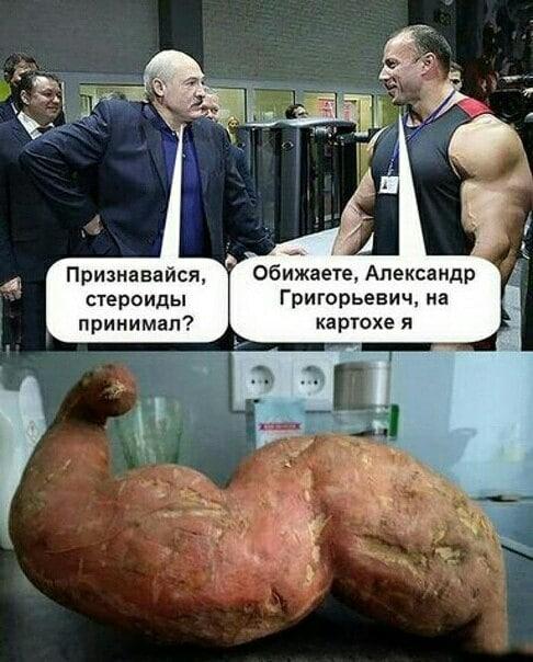 Прикол про Лукашенко и картоху